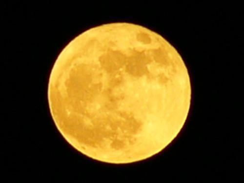 月の画像 p1_10